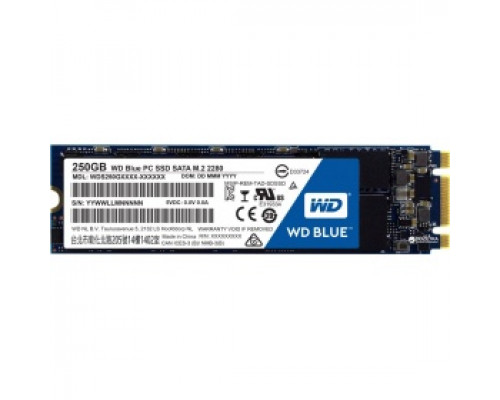 Твердотельный накопитель 250Gb SSD Western Digital Blue (WDS250G2B0B)